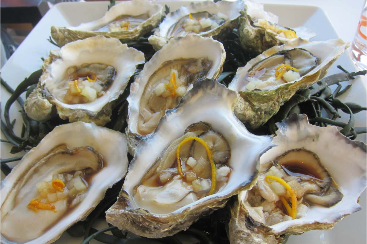 normandy-oysters